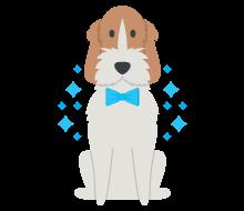 Canine Hygiene Cork